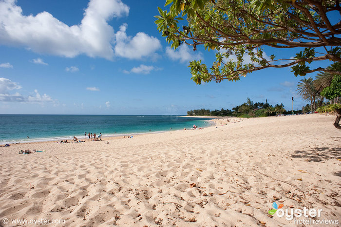 Guests can surf, snorkel, or swim at Turtle Bay's beach, right outside the door. Protective coral reef keeps the water fairly calm and clear.
