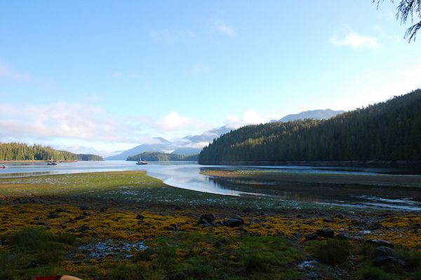 Barnard Harbor, en Great Bear Rainforest (Foto cortesía de Dogwood Initiative )