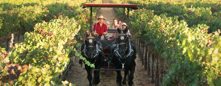 Photo Credit: The Wine Carriage
