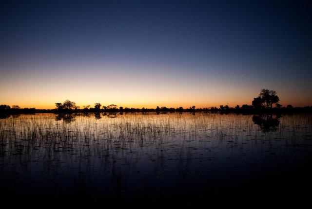 y más allá Xaranna Okavango Delta Camp / Oyster