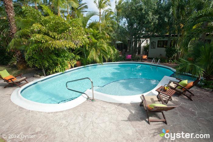 A piscina do Boardwalk Hotel Aruba pode ser pequena, mas as espreguiçadeiras coloridas e a vegetação sombria conferem uma sensação isolada.