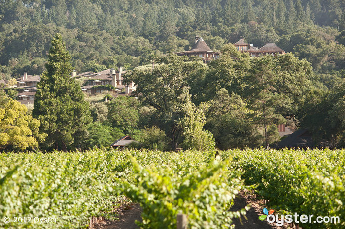 The vineyards of Napa Valley produce some of the country's best wine -- and breathtaking scenery.
