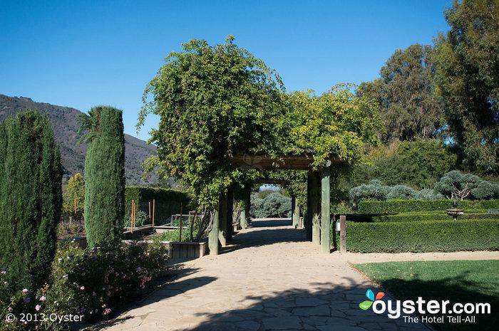 Passeggiare attraverso i giardini con un bicchiere di vino suona quasi perfetto in questo momento.