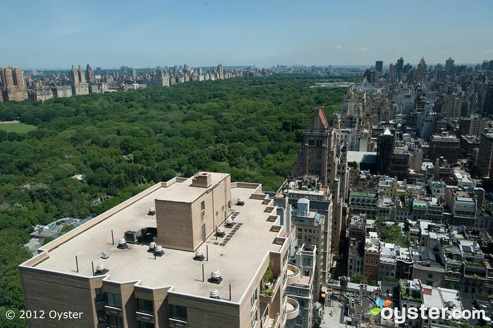 With expansive views of Central Park and the New York City skyline, The Pierre is the perfect spot for a post-wedding photo shoot.