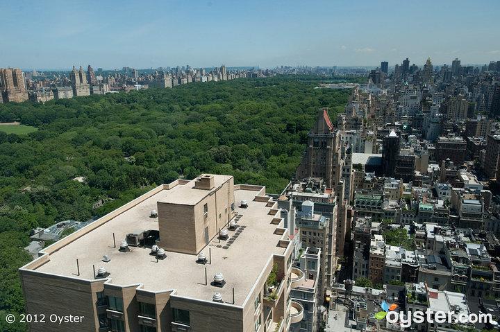 Con amplias vistas de Central Park y el horizonte de la ciudad de Nueva York, The Pierre es el lugar perfecto para una sesión fotográfica posterior a la boda.