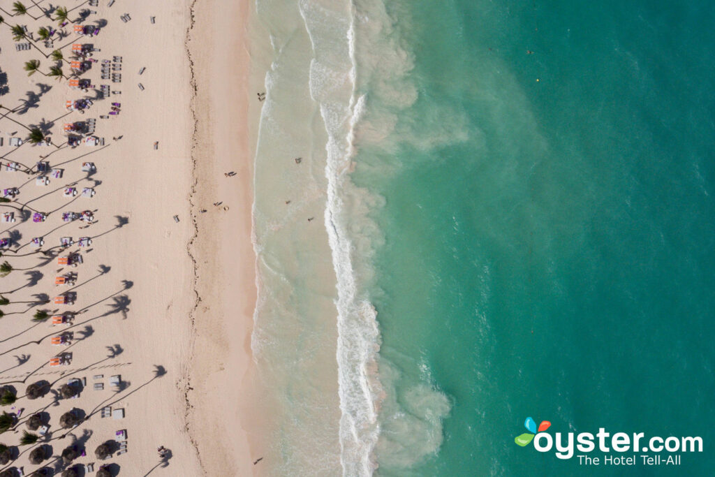Paradisus Punta Cana Resort / Oyster