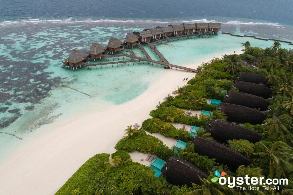 Kandolhu Maldives / Oyster