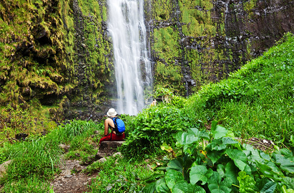 Photo: Waterfall via Shutterstock