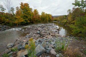 Fall foliage in the Catskills (Photo by Katherine Alex Beaven)
