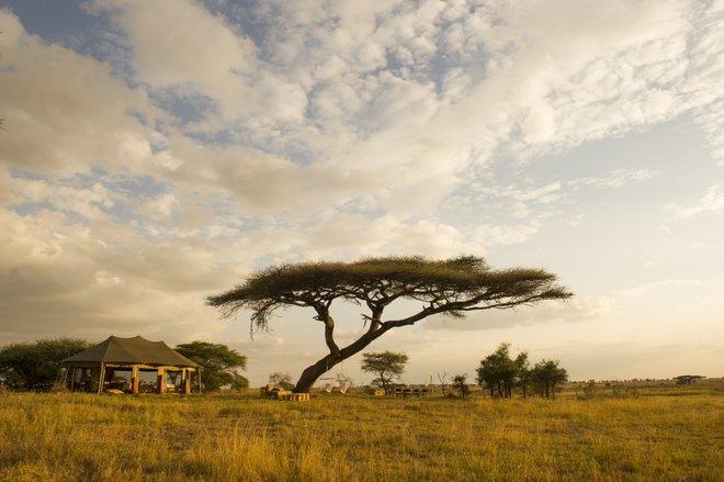Namiri Plains tented camp in the Serengeti/Courtesy of Namiri Plains