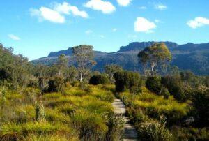 Overland Track image courtesy of Grace Wye.