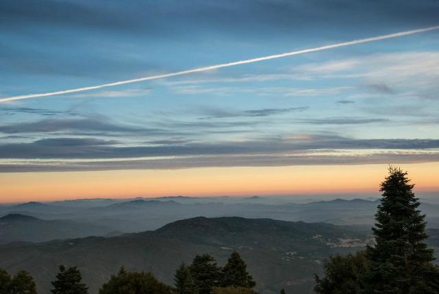 Photo Credit: Palomar Mountain State Park