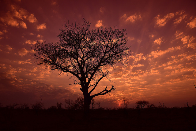 South African Tourism via Flickr