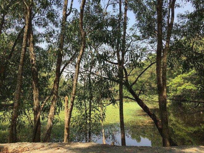 Lake at Choeung Ek; image courtesy of Kyle Valenta.