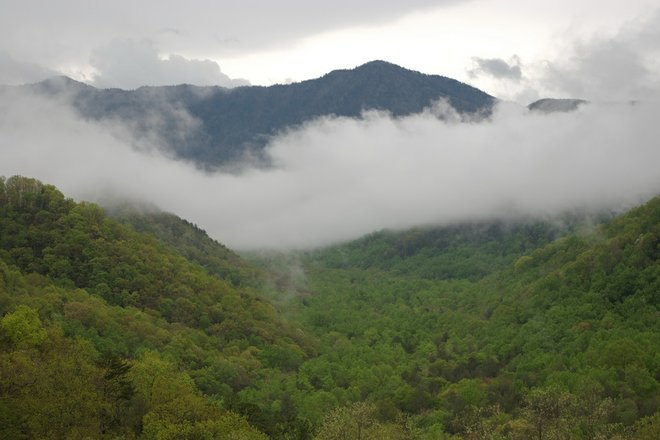 An amospheric Smoky Mountains view courtesy of Dan via Flickr