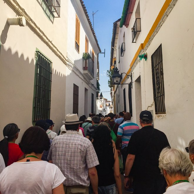 My Julia Travel group being herded through Cordoba