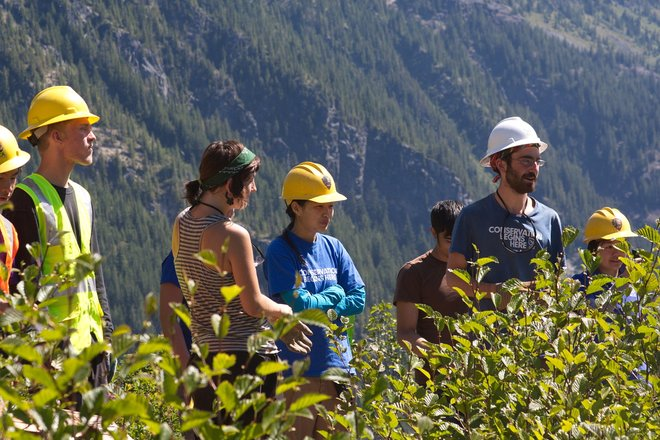 Volunteer image courtesy of Mount Rainier National Park