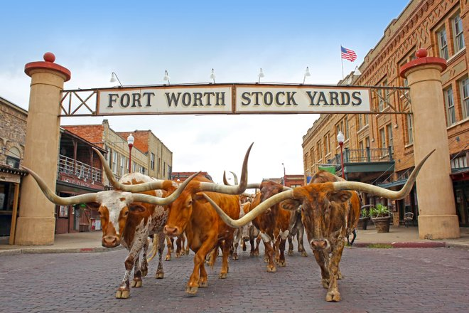 The historic Fort Worth Stockyards. Courtesy of the Fort Worth Convention and Visitor Bureau