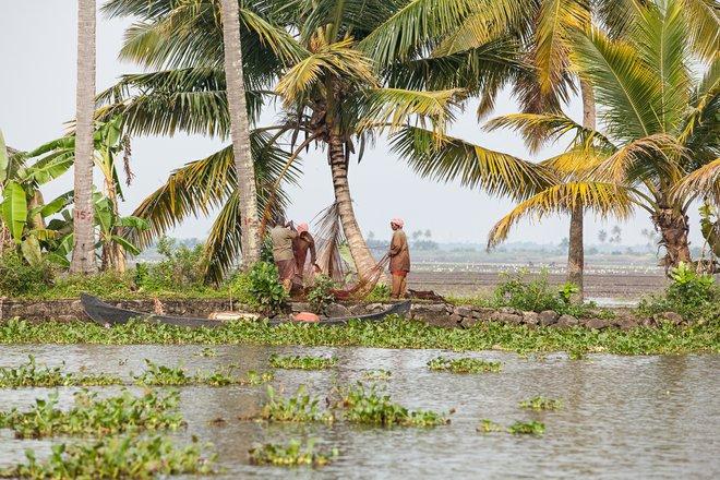 Imagem de remanso de Kerala cortesia de Tom Godber via Flickr
