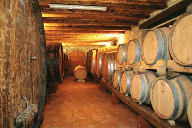 Wine cellar courtesy of Colours of Istria