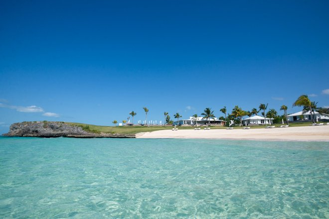 The Cove Eleuthera/Oyster
