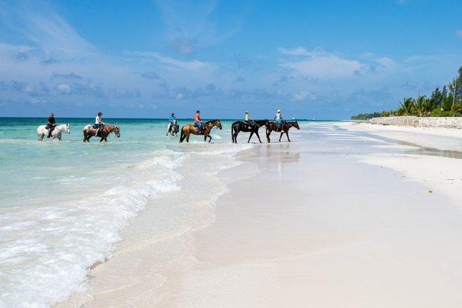 La playa en el Island Seas Resort / Oyster
