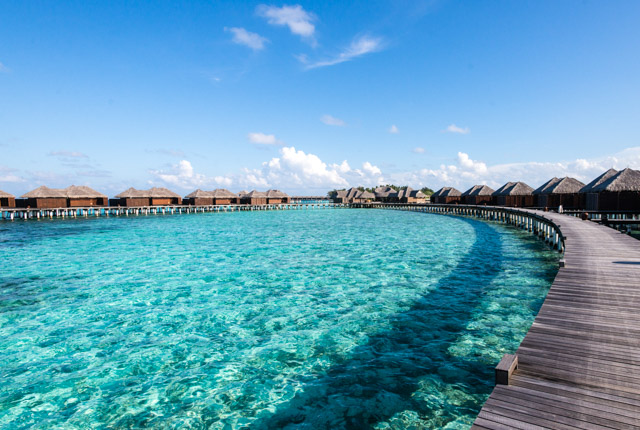 Coco Bodu Hithi / Oyster