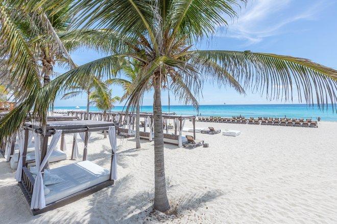 Playa en el Hyatt Zilara Cancun / Oyster