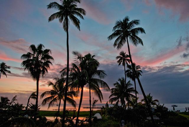 Four Seasons Resort Nevis / Oyster