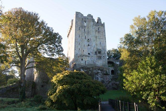 Castello di Blarney / Oyster