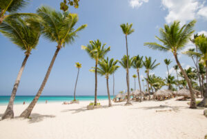 Beach at the Iberostar Grand Bavaro Hotel/Oyster