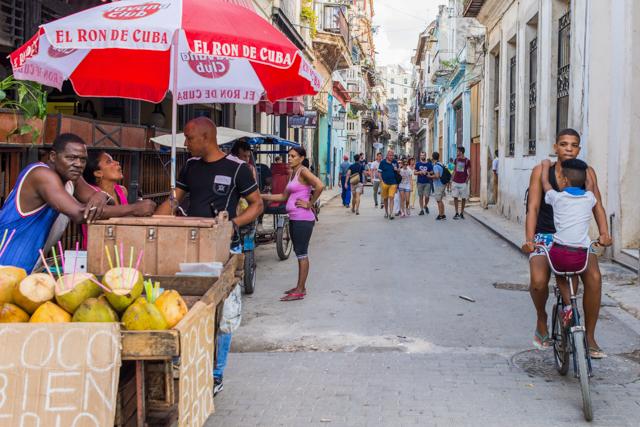Havana, Cuba / ostra