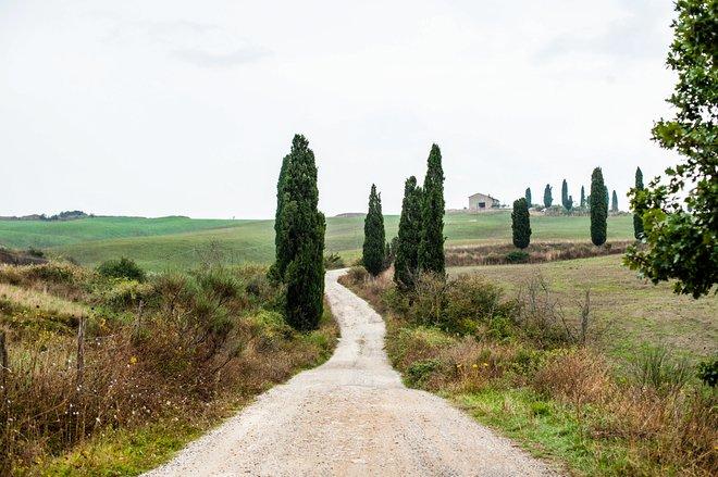 Street at La Bandita in Pienza/Oyster