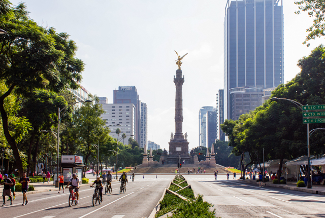 Angel Independencia/Oyster