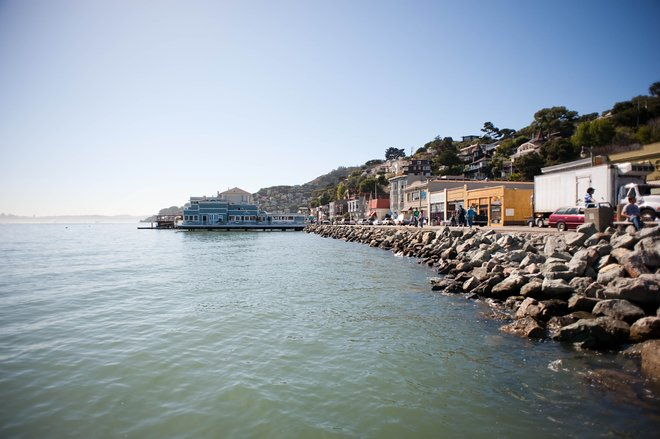 Sausalito, San Francisco/Oyster