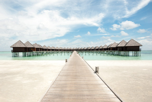 Olhuveli Beach & Spa Resort / Oyster