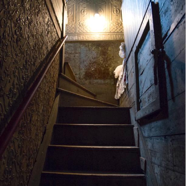 El Hotel Shanley / Katherine Alex Beaven