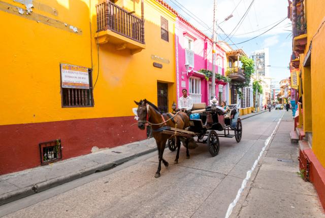 Cartagena/Oyster