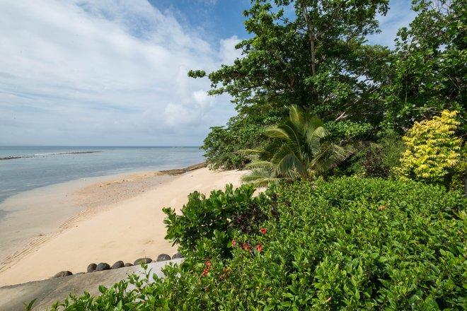 Die Beach Villa Pool im Taveuni Palms Resort / Oyster