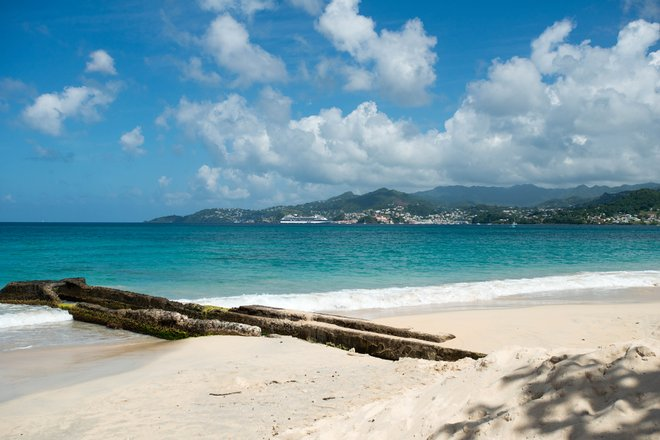 Beach at the Mount Cinnamon Grenada/Oyster