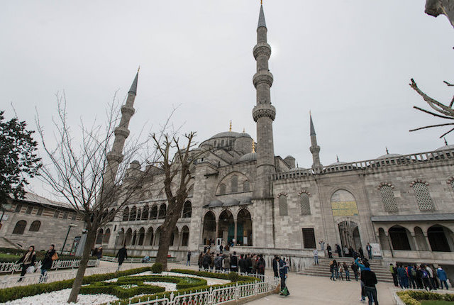 The Blue Mosque, Istanbul/Oyster