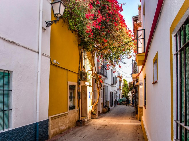 Street at the Hotel-Apartamentos Puerta de Aduares/Oyster