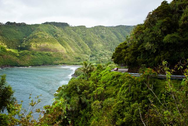 Camino a Hana, Maui, Hawaii / Oyster