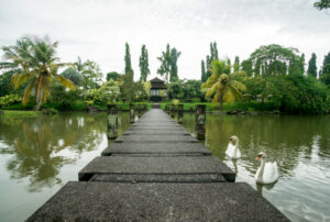 Grounds at The Chedi Club Tanah Gajah a GHM Hotel/Oyster