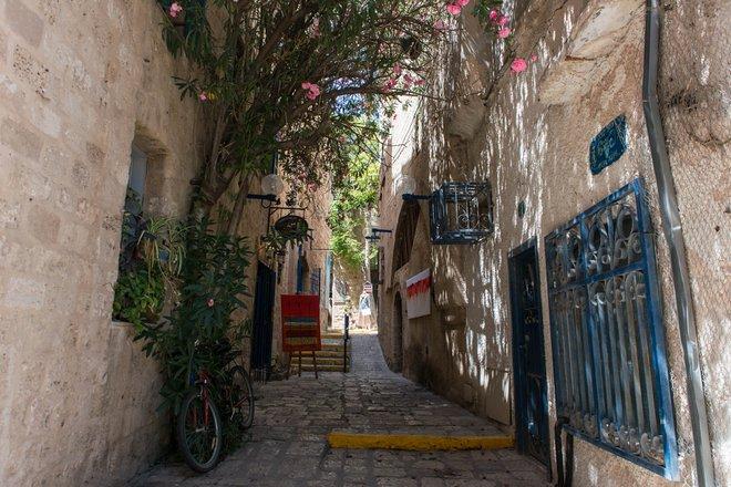 Jaffa, Tel Aviv/Oyster