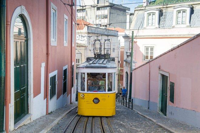 Calçada da Glória, Lisbonne / Huître