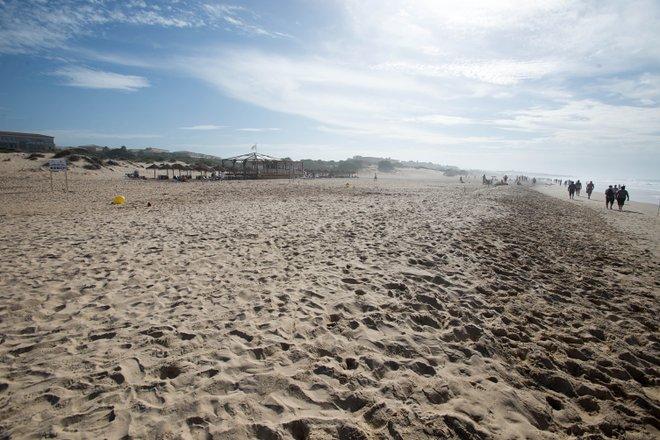 Playa de la Barrosa / Oyster