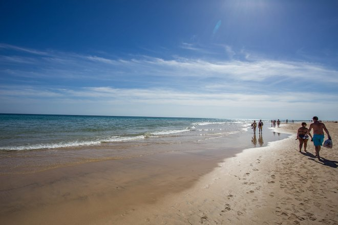 Sotavento Beach/Oyster