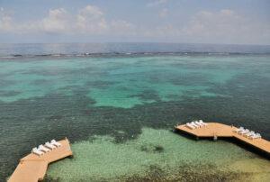 Moxons Beach Club, Ocho Rios, Jamaica/Oyster
