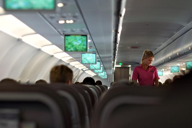 Flight Attendant Horror Stories   Oyster com